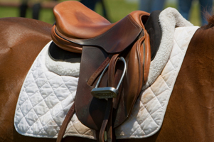 Making sure your saddle fits is vital to your horse's happiness.
